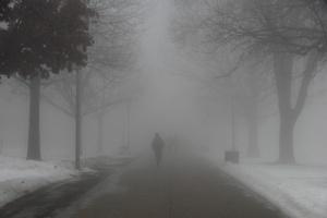 fog-21