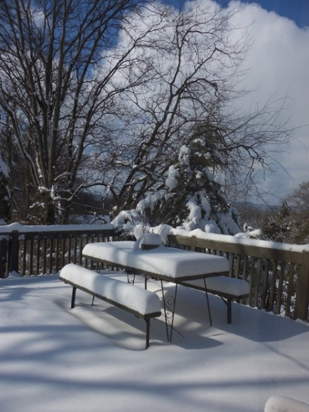 Snow Jan 2016